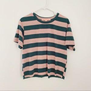 REBELLIOUS ONE Pink and Green Striped Crop Top